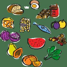 Tallers d'alimentació per a esocles